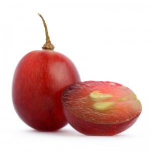 Grape seed ectract